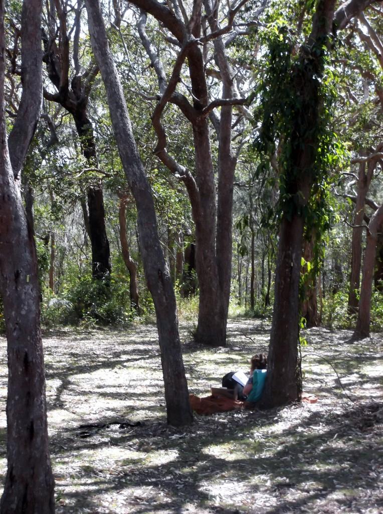Reading under the trees at the coastal retreat